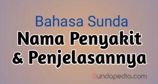 Nama Penyakit dalam Bahasa Sunda