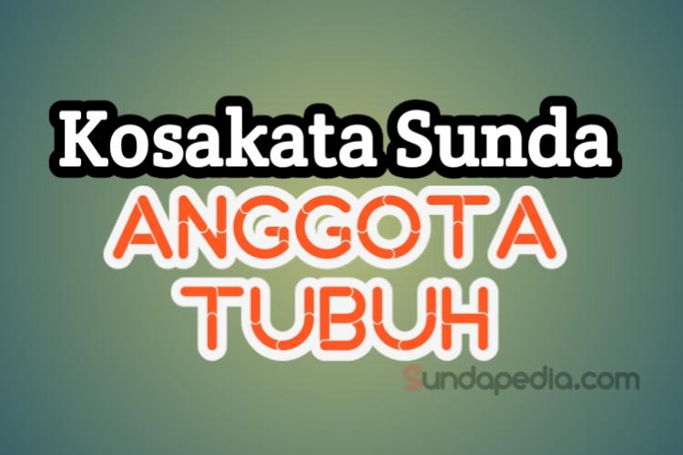 Nama anggota tubuh bahasa Sunda