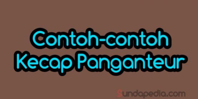 Contoh Kecap Panganteur