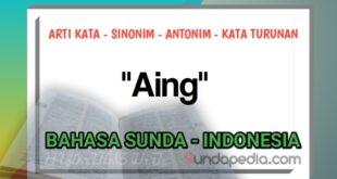 Arti kata aing bahasa Sunda