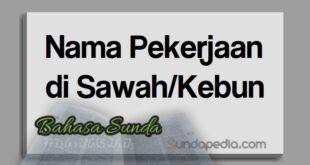 Nama pekerjaan di sawah atau di ladang bahasa Sunda