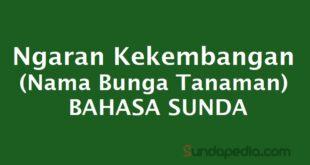 Ngaran kekembangan nama bunga bahasa Sunda