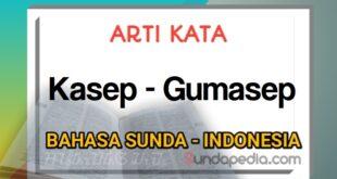 Arti kata kasep dan gumasep bahasa Sunda