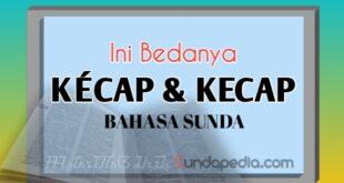 Bedanya Kécap dan Kecap dalam Bahasa Sunda