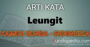 Arti Kata Leungit dalam kamus bahasa Sunda online