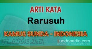 Arti Kata Rarusuh dalam Kamus Bahasa Sunda