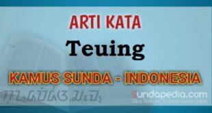 Arti kata teuing dalam kamus bahasa Sunda