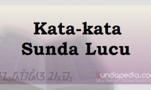 Kata-kata Sunda lucu pisan untuk status facebook