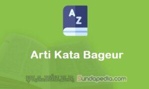 Arti Kata Bageur dalam Kamus Bahasa Sunda