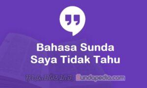 Bahasa Sundanya Saya Tidak Tahu