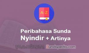 Kumpulan Peribahasa Sunda Nyindir dan Artinya